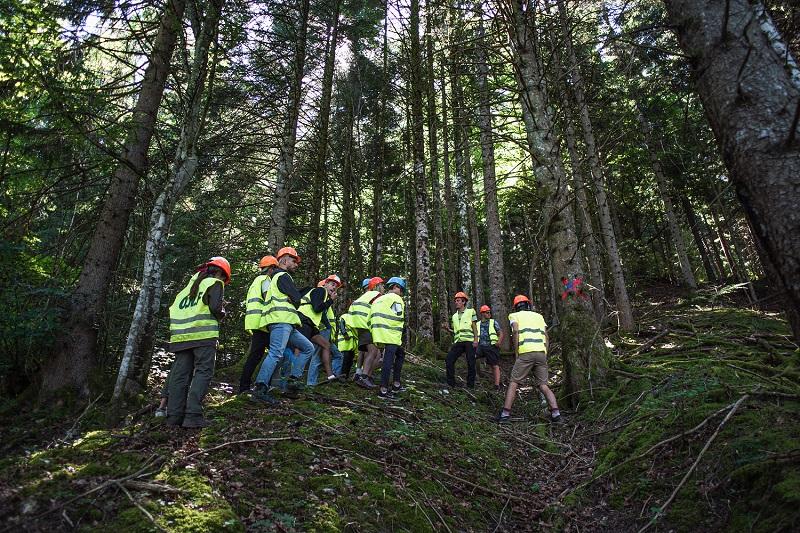 Vis ma vie de bûcheron : découvrez de l'intérieur les métiers d'un chantier forestier !